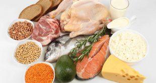 پروتئین وی - منابع پروتئینی فوق العاده برای ساخت عضله
