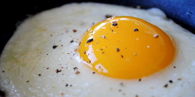 غذاهای مفید برای کبد - آیا خوردن تخم مرغ برای کبد چرب مضر است؟