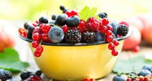 خواص توت - میوه ای فوق العاده برای سلامتی و سرشار از آنتی اکسیدان