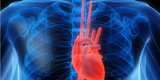 غذاهای مفید برای بیماران قلبی