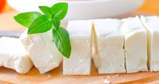 خوردن پنیر در بارداری