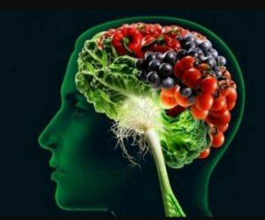 doctormovahed.com مواد غذایی مفید برای مغز